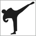 PSV Essen Taekwondo